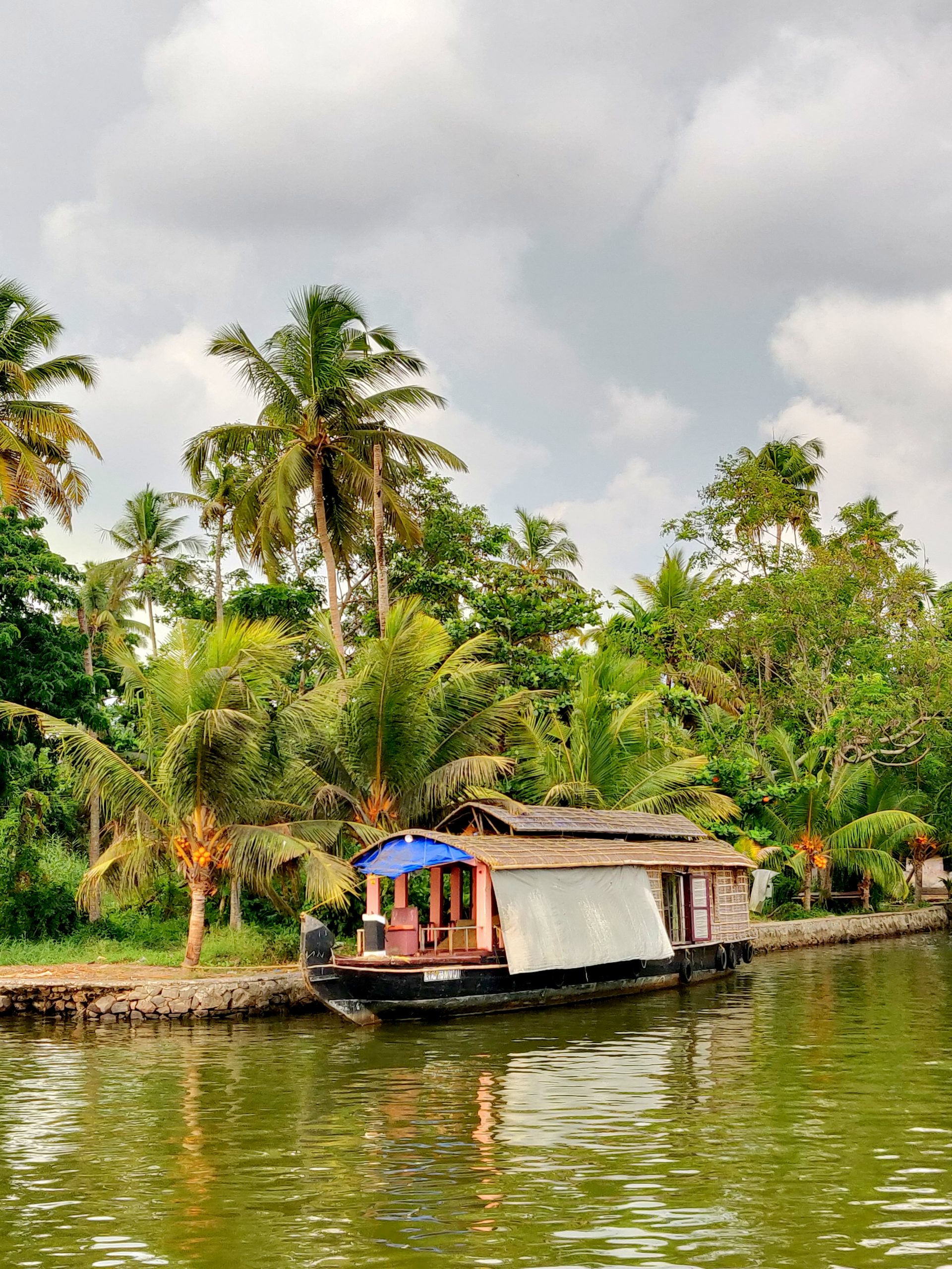 Cruising in the backwaters of Alleppey